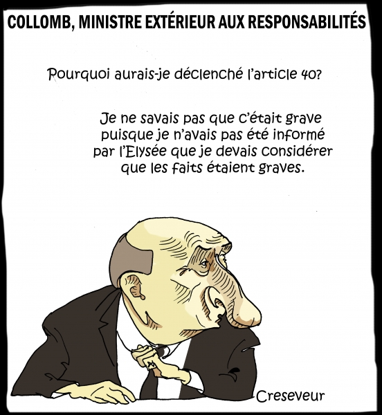 Collomb devant la commission 2 .JPG