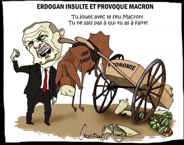 Erdogan insulte Macron.JPG