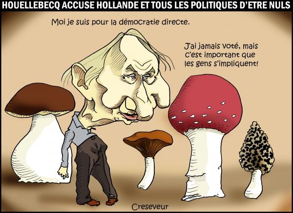 Houellebecq accuse.JPG