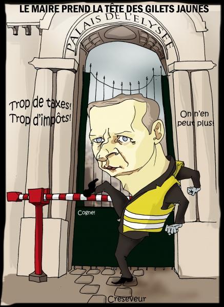 Le Maire représentant des gilets jaunes.JPG