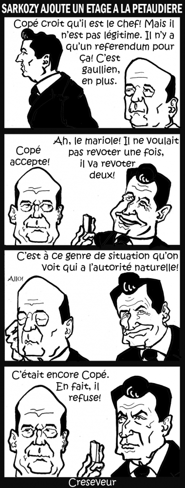 Sarkozy s'en mêle .jpg