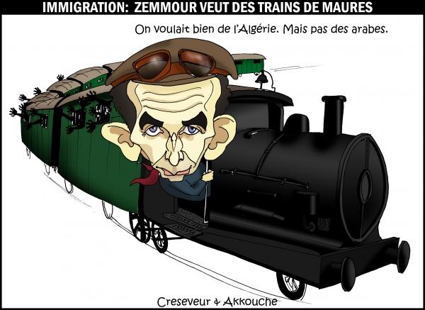 Zemmour veut déporter les immigrés.JPG