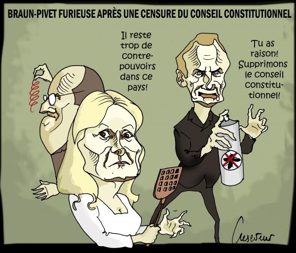 Braun-Pivet agacée par le Cons constitutionnel.jpg