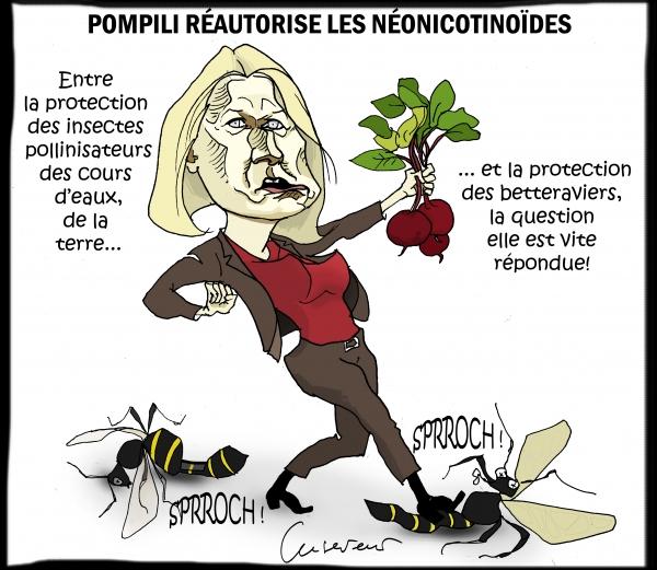 Pompili réautorise les néonicotinoïdes.jpg
